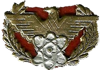 Distinctive Insignia of the Signal Corps - Republic of Vietnam Armed Forces