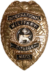 NATO International Military Police
