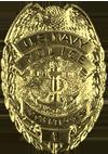 U.S. Navy Police (Chief/Officer)