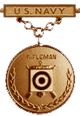 Navy Rifleman Excellence in Competition Badge (Bronze)