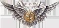 Combat Air Crew Wings