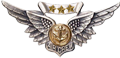 Combat Air Crew Wings with 3 Stars