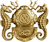Diving Officer Badge