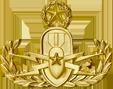EOD Officer Warfare Badge