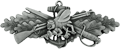 Seabee Combat Warfare Specialist Enlisted Badge