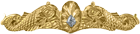 Submarine Medical Badge