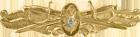 Surface Warfare Medical Badge