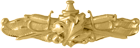 Surface Warfare Supply Badge
