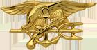 Special Warfare Officer Badge