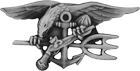 Special Warfare Enlisted Badge