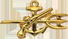 Underwater Demolitions Team (Officer-WW2)